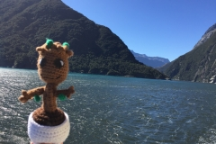 New Zealand - Baby Groot - March 2016