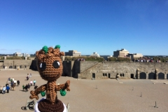 Nova Scotia - Baby Groot - Sept 2015