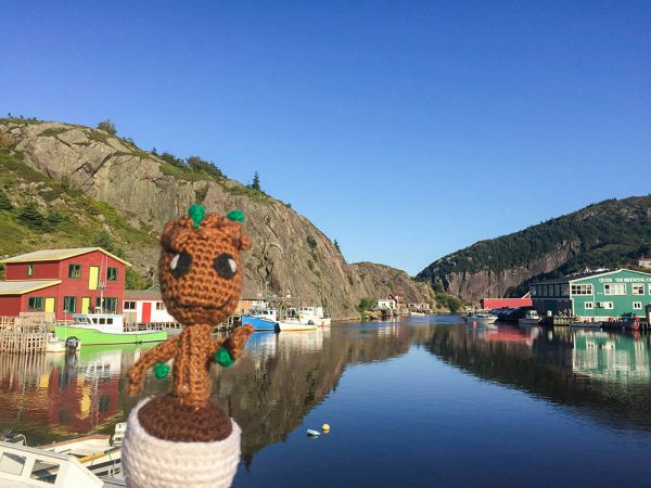 baby groot crochet doll in front of Quidi Vidi in Newfoundland