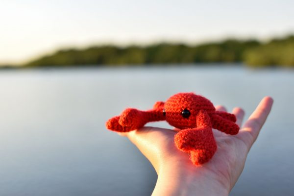 A small crochet crab toy held up in front of a lake