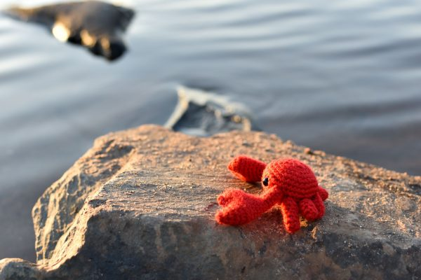 A small crochet crab toy sitting on a rock in a lake