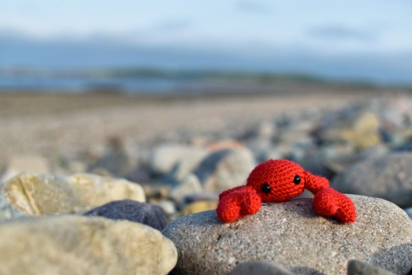 A small crochet crab toy sitting on a rock on a beach