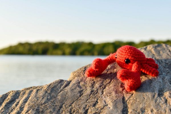 A small crochet crab toy sitting on a rock in front of a lake