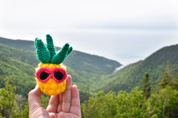 a small crochet pineapple toy with pink sunglasses held up against a beautiful view of forested hills and ocean