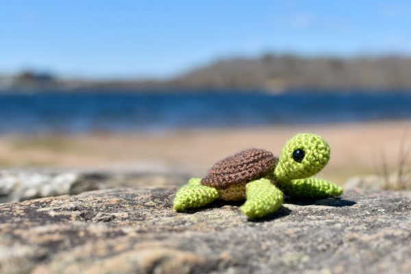 a small crochet sea turtle toy sitting on a rock on a beach next to a lake