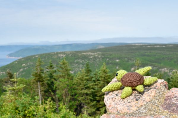 a small crochet sea turtle toy sitting on a rock outcropping overlooking a beautiful view of forested hills and ocean