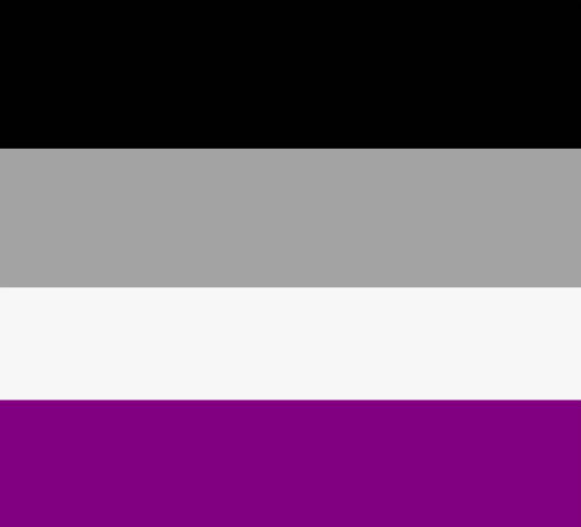 The asexual pride flag - black, grey, white, purple