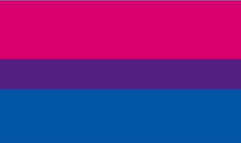 the Bisexual flag - dark pink, purple, dark blue