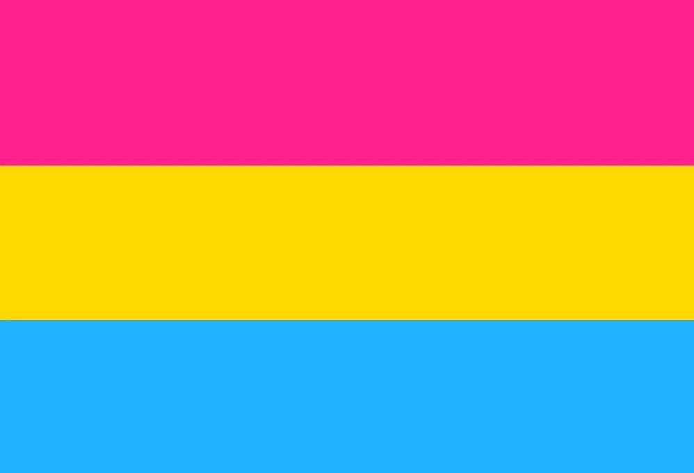 the pansexual pride flag - pink, yellow, and blue